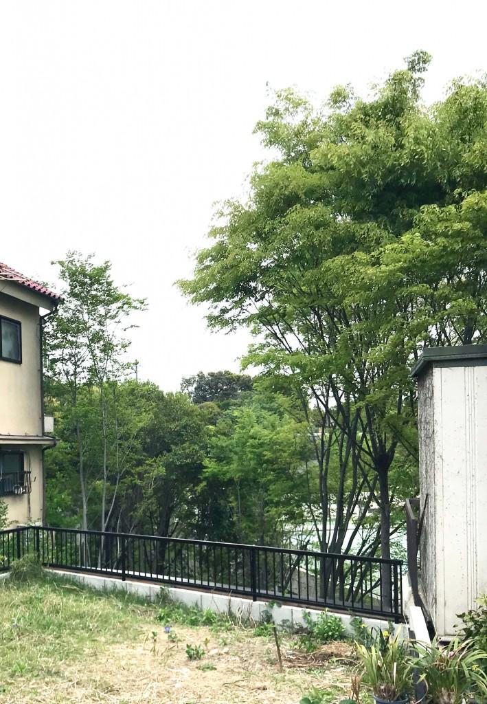 (敷地奥の眺望。この緑を楽しめるよう設計しています。)