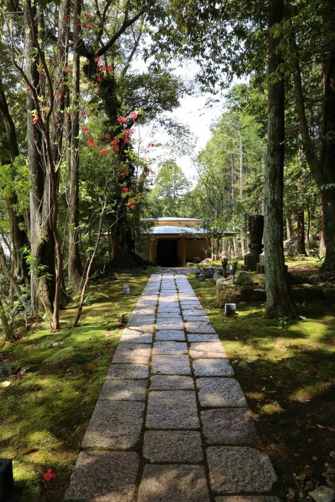 竹林寺-1